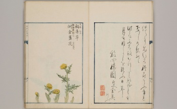 【General Lib.】Early Japanese Books (NIJL-NW project)